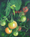 """Tomato Vines"" by Joanne Unruh"